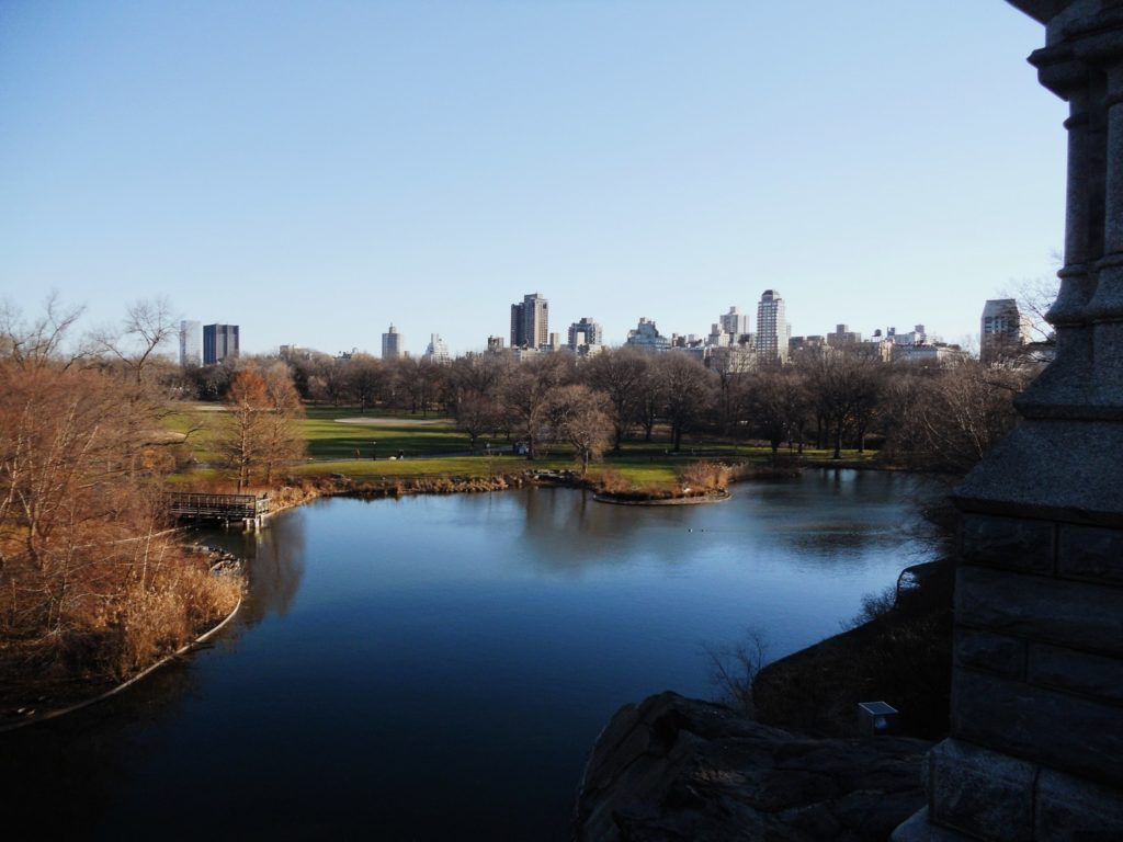 activite noel new york balade central park
