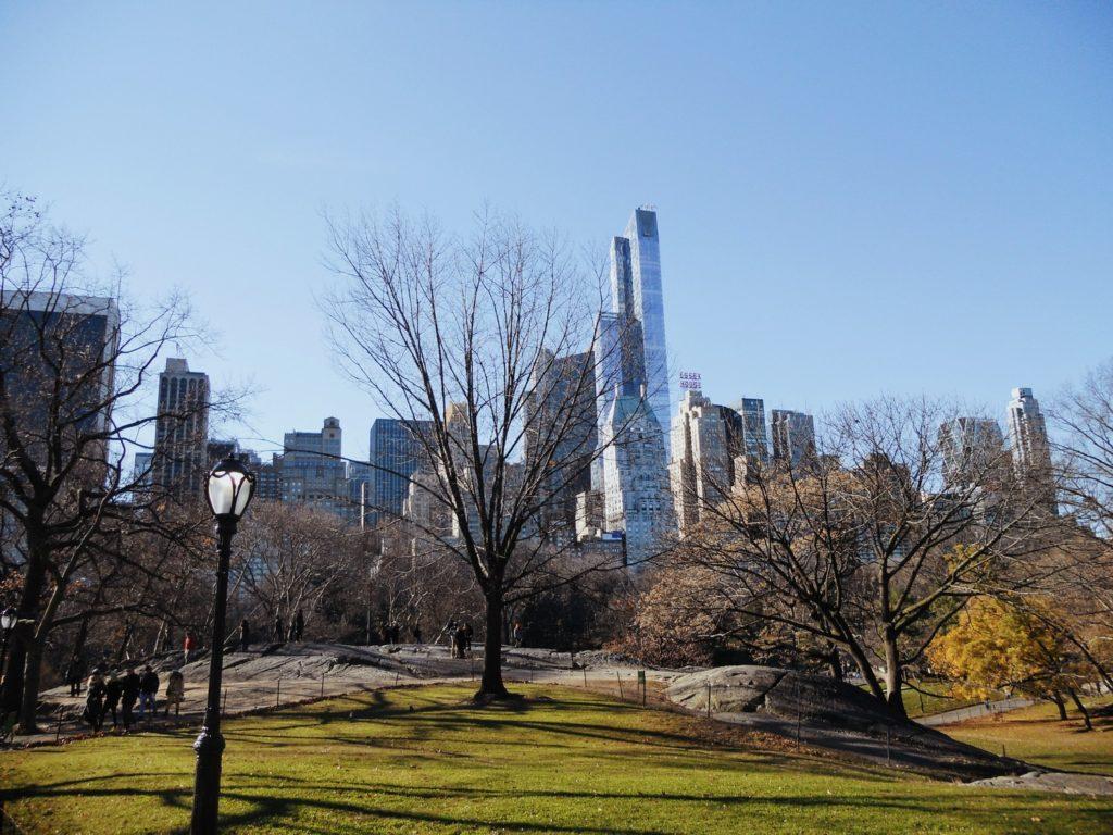 balade central park noel new york